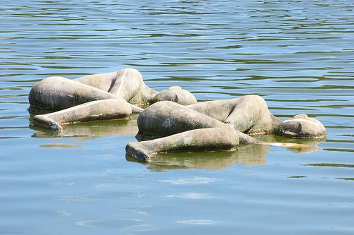 Villa Pisani: sleeping people on water by Franco Amormino