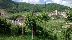 Veneto - Prosecco Hills - Fun things to do