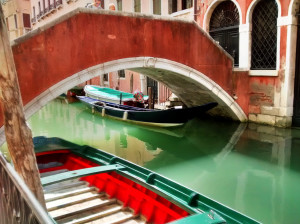 must do things in venice