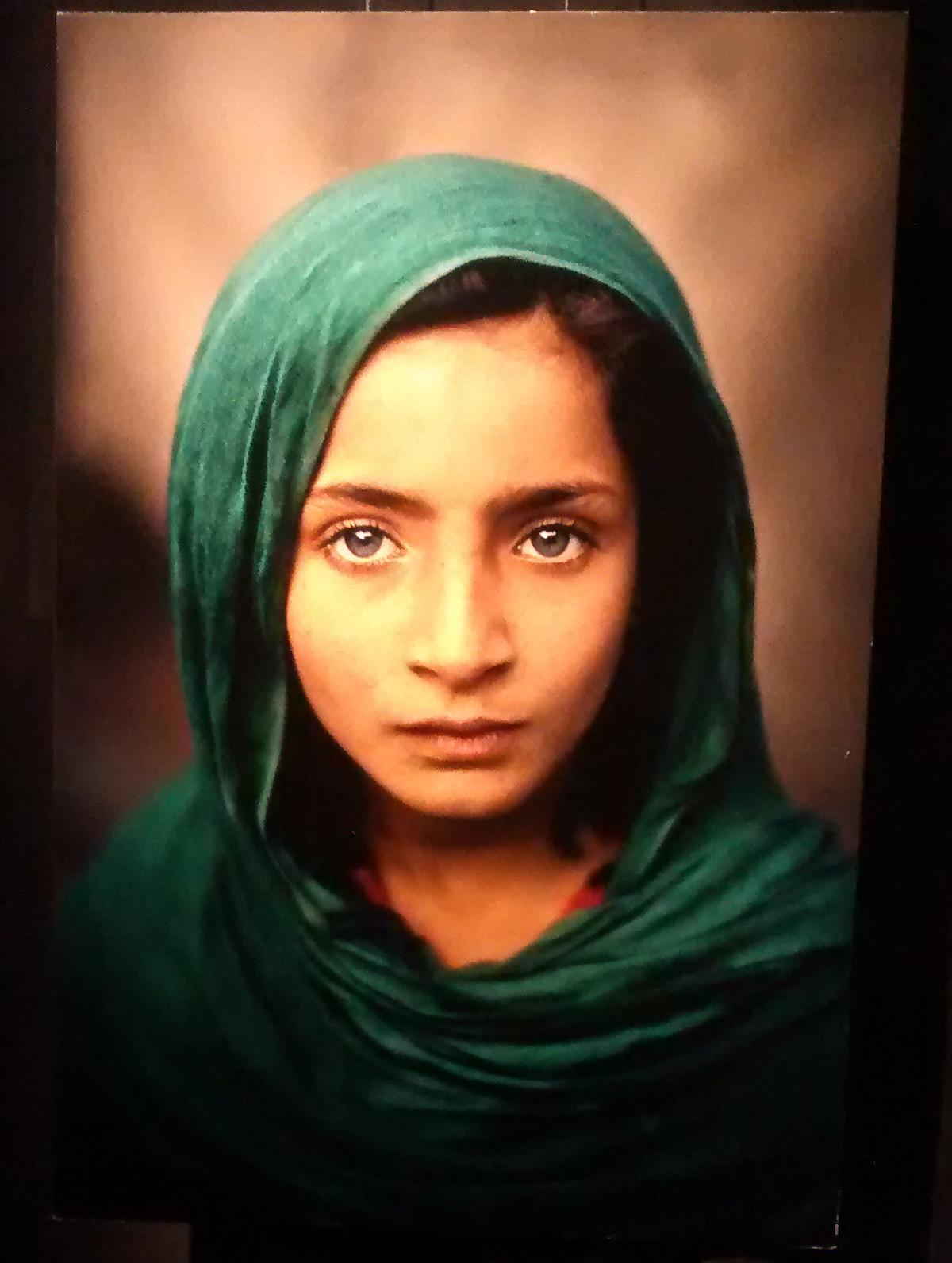 McCurry Forli
