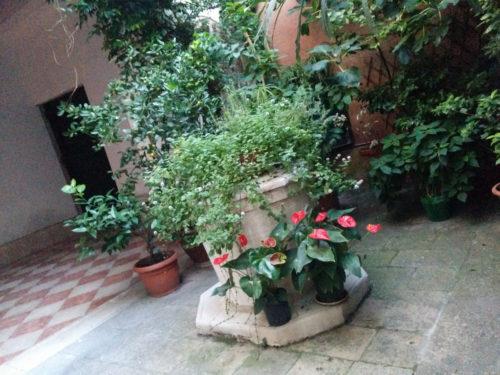 secret gardens venice