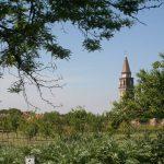 Mazzorbo-Venissa-garden