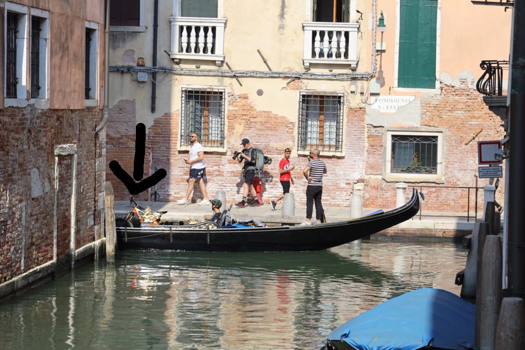 crazy tourists